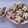 桜咲く咲くクッキーの画像