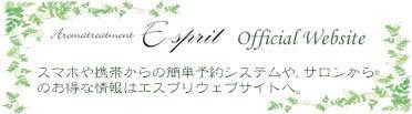 E-sprit Websiteはhttp://www.e-sprit.info/