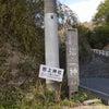 神籬の巨石!磐座のパワーがすごい!岩上神社 淡路島の画像