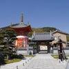 あたたかい大黒様にあえる八浄寺 淡路島の画像