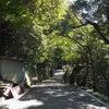 岩戸神社の磐座のパワーはあたたか~い!千光寺&岩戸神社 淡路島の画像