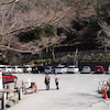 愛宕神社の総本宮 愛宕山はのどかな雰囲気~♪の画像