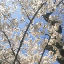 桜と共に・・・。