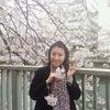 4月・5月の花とアロマの講座お知らせの画像