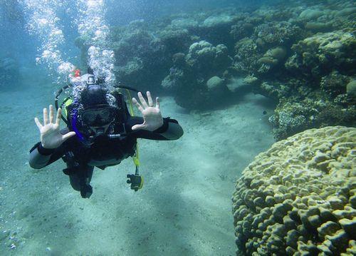 カップルで楽しめる沖縄離島石垣島貸切スキューバダイビング体験落ち着いてのんびり楽しめる