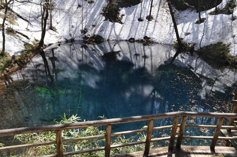 2015年4月の白神山地「十二湖」青池正面