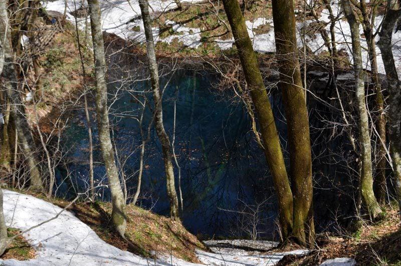 2015年4月の白神山地「十二湖」青池を裏から