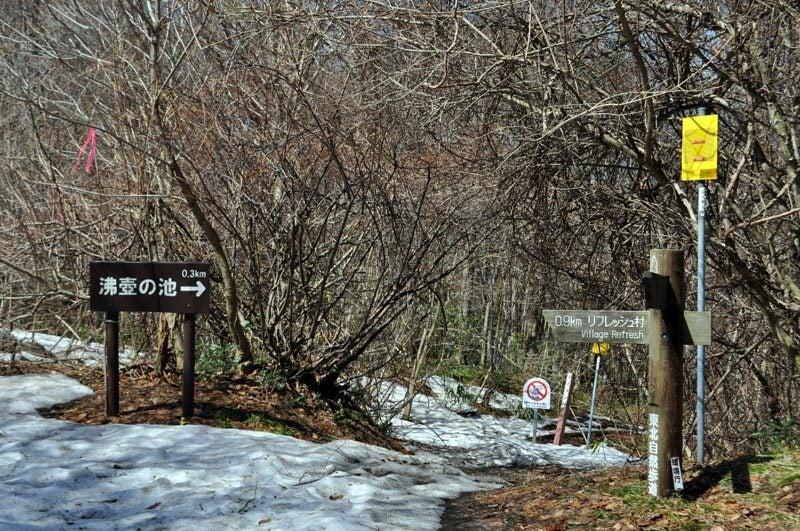 2015年4月の白神山地「十二湖」の散策路