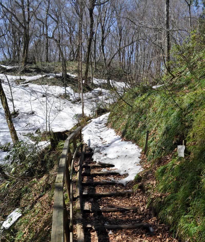 2015年4月の白神山地「十二湖」の階段