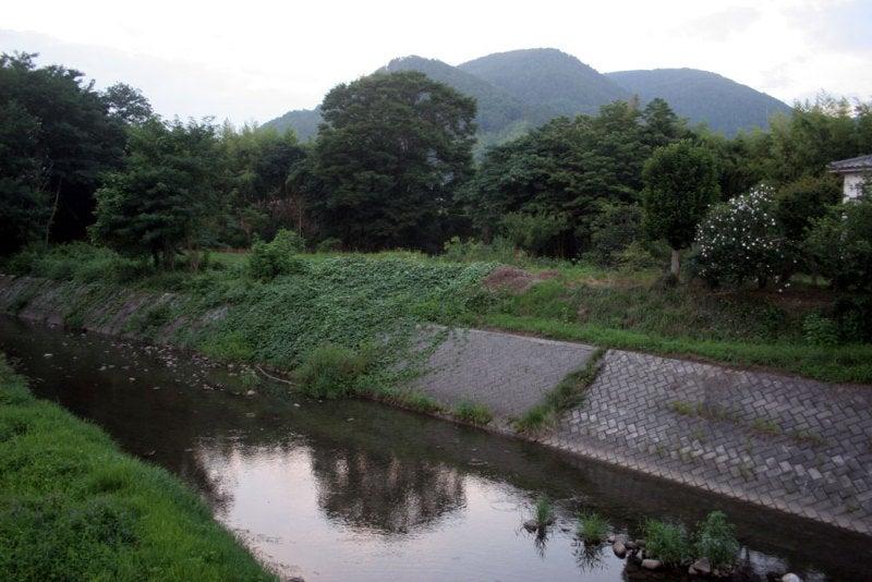 岡城/⑧南側の川