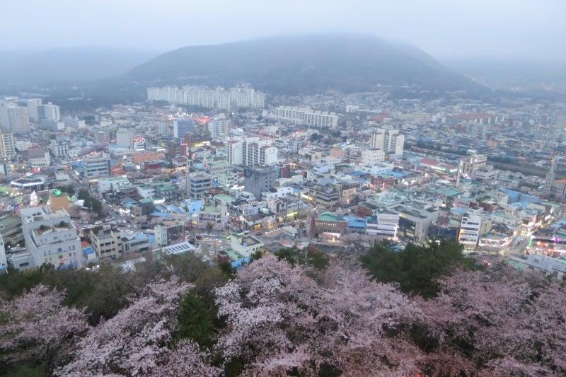 鎮海桜祭17