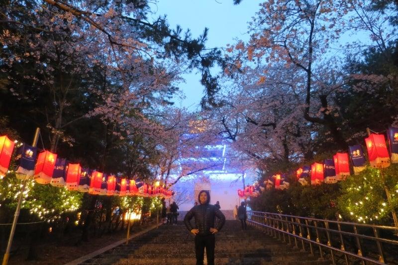 鎮海桜祭20