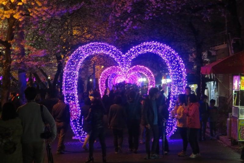 鎮海桜祭26