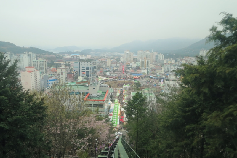 鎮海桜祭16
