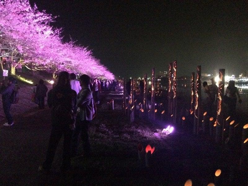 桜スマイルフェスタ14