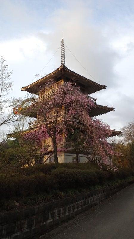 浄専寺の三重塔