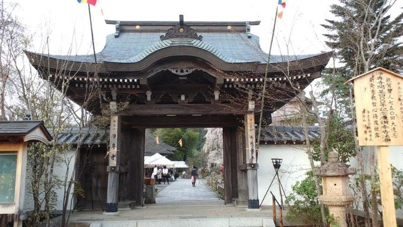 浄専寺正面の門