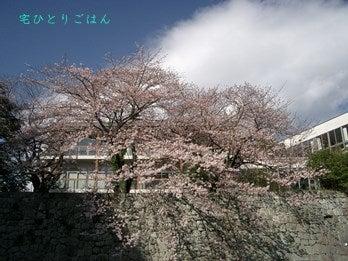20150401_X2