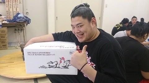 阿炎関 パワーストーン | (株)...