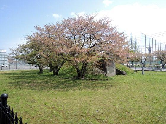 f0411a/長崎旅