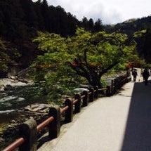 今日の香嵐渓はお天気