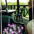 緑に囲まれたレストラ…
