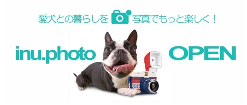 いぬPHOTO