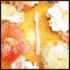シック・ジャパン シック プレミア敏感肌用折りたたみタイプLディスポの画像