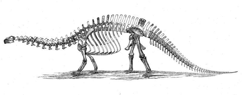 ブロントサウルスのイースター(復活祭) | ひろさんのいつまでたって ...