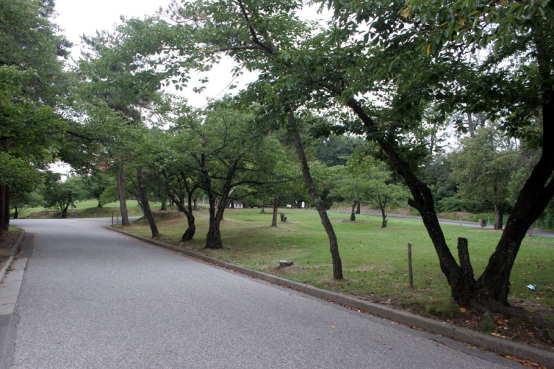 犬甘城/①城山公園