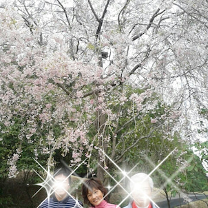 栃木県の画像