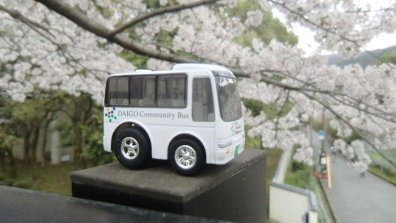 桜並木と醍醐コミュニティバスチョロQ part.2