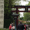 根津神社のつつじの画像