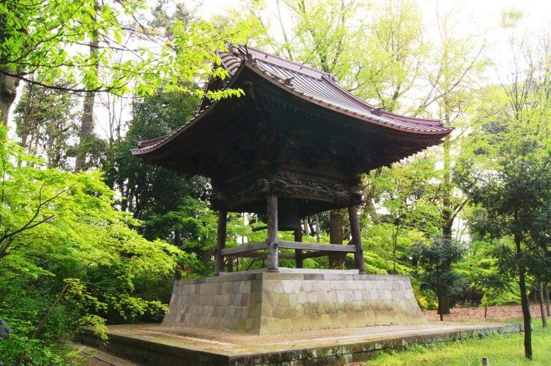 ⑤新緑浄真寺