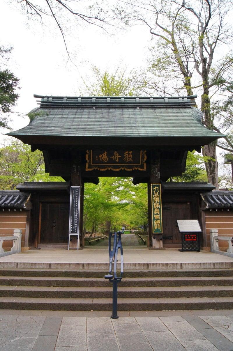 ①新緑浄真寺