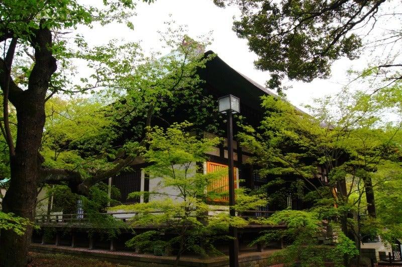 ⑨新緑浄真寺