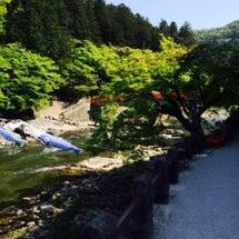 今日の香嵐渓