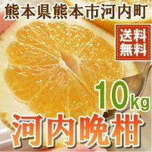河内晩柑正規品10kg