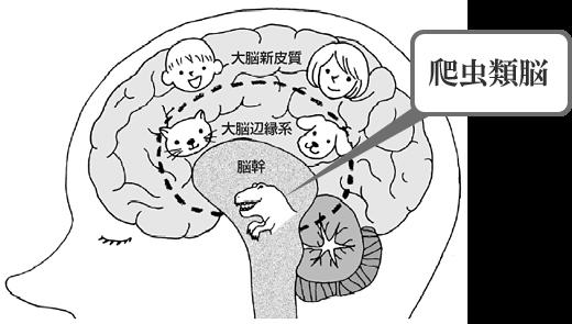 「爬虫類脳」の画像検索結果