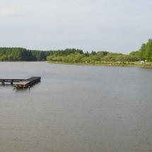 新緑の水元公園は、今…