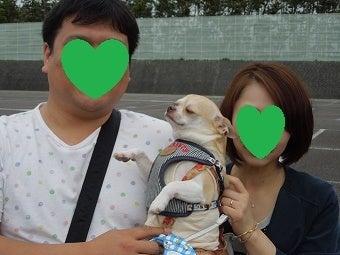 5/4保護犬会に行ってみた!の記事より