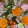 お花をいただきました…