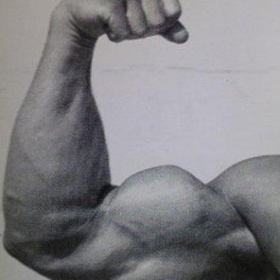 マッスルコントロール 上腕二頭筋のトレーニング 人目を引く力こぶを作る!の記事に添付されている画像