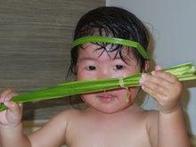 菖蒲の湯。