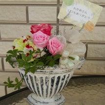 「母の日のプレゼント…