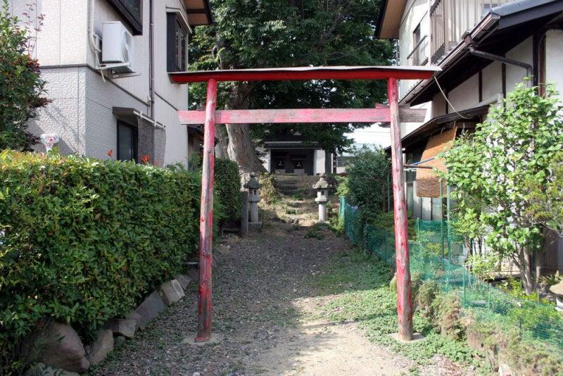 横田城/⑤反対側から見た稲荷社