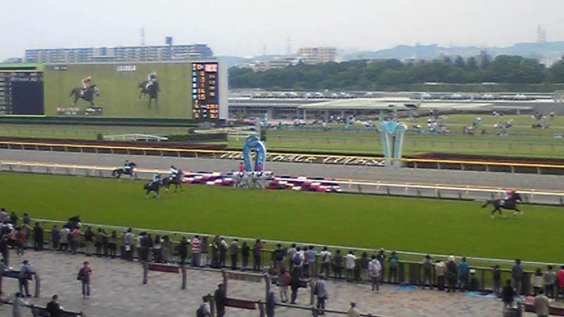 天気 場 東京 競馬