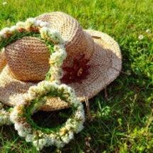 シロツメ草の花かんむ…
