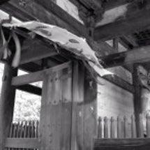 仁和寺と西院(さい)…