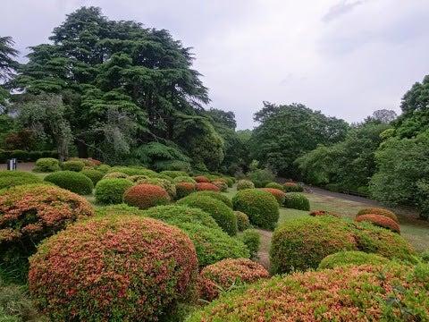 洋風庭園,新宿御苑〈著作権フリー無料画像〉Free Stock Photos